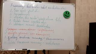 5. Azərbaycan dili.Frazeoloji birləşmə