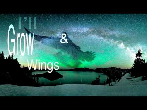 """Fly Away"" Lyric Video"