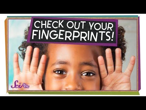 See Your Own Fingerprints!