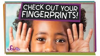 Fabulous Fingerprints!