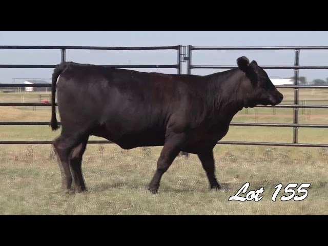 Pollard Farms Lot 155