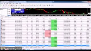 323 trades 89 1% win rate Forex trading
