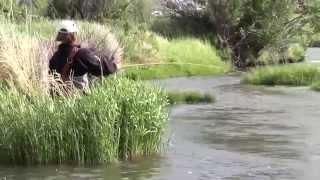 Fish Whispering episode 0403: The Clark Fork river