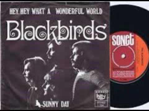Blackbirds-Hey Hey, what a wonderful world (HQ)
