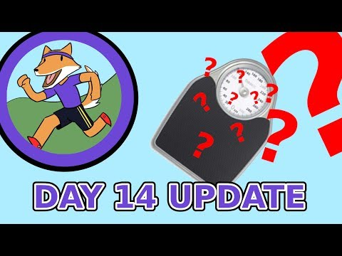 My Fitness Journey: Day 14 Update thumbnail