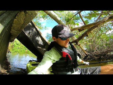 Smorgasbord Catch Exploring Hidden Salt Ponds
