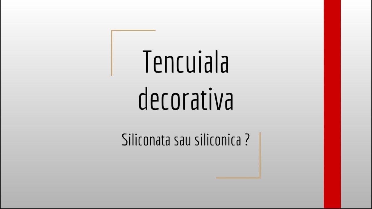 Tencuiala Decorativa Siliconica Baumit.Tencuiala Decorativa Structurata Siliconata Sau Siliconica