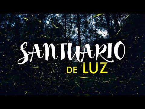 El Santuario de las Luciérnagas en Puebla que no conocías