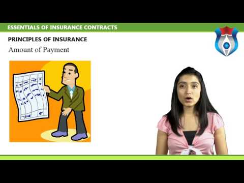 ESSENTIALS OF INSURANCE CONTRACTS