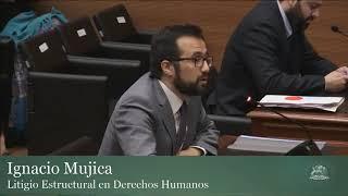 Audiencia Pública Rol 3729 - Día 1 - Grupo Exponente 3 2017 Video