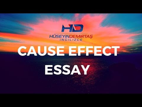 Cause Effect Essay Nedir