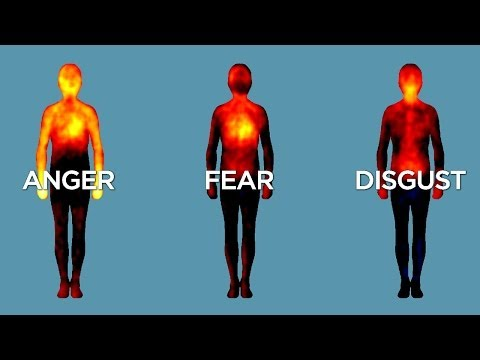Mapping Emotions in the Body: A Finnish Neuroscience Study Reveals Where We Feel Emotions in Our Bodies