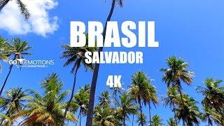 BRASIL / SALVADOR DE BAHÍA  EN 4K