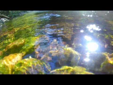 Activeon Beispiel 2 Unter Wasser