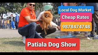 #PatialaDogShow #LocalDogMarket #CheapRates | By Baadal Bhandaari | Pathankot Punjab 9878474748