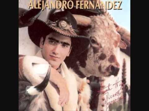 Alejandro Fernandez - Cascos Ligeros