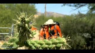 4 heat relsted deaths arizona
