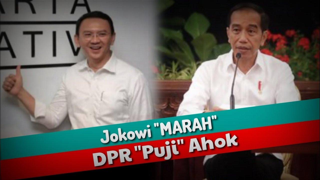 Jokowi Marah Dpr Puji Ahok Youtube