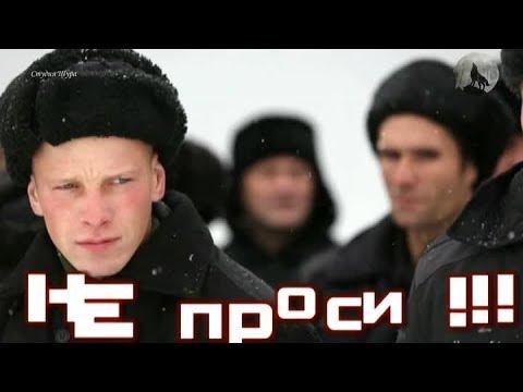 Андрей Шишкин - Строгий Режим (Студия Шура) клипы шансон лучшие