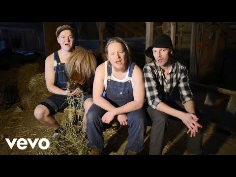 Steve`n`Seagulls  You Shook Me All Night Lg