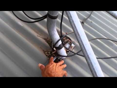 roof maintenance - debris build up causing leaks on corrugated roof