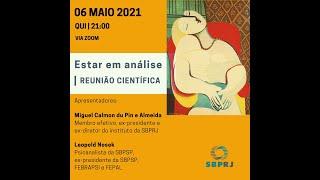 Reunião Científica - Estar em análise 06/05/21