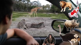 EXOTIC Outdoor ANIMAL Drive-Through TOUR!!