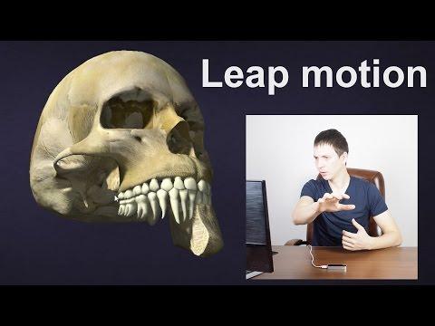 Leap motion - обзор и подключение к PC