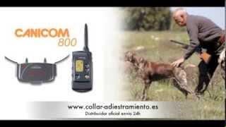 Canicom 800 Collar Adiestramiento Profesional