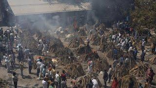 وفيات كورونا في الهند تتجاوز 200 ألف والسلالة الهندية للفيروس رصدت في 17 دولة…