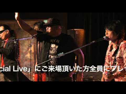 BLUFF Live at BLUES ALLEY JAPAN