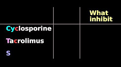 Immunosuppressive pharmacology: Cyclosporine, Tacrolimus, Sirolimus: mTOR, FK, IL2