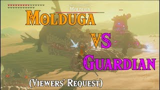 Molduga VS Guardian! More EPIC than Ganon! (BotW Viewers Request) in Zelda Breath of the Wild DLC