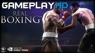 Real Boxing Gameplay (PC HD)