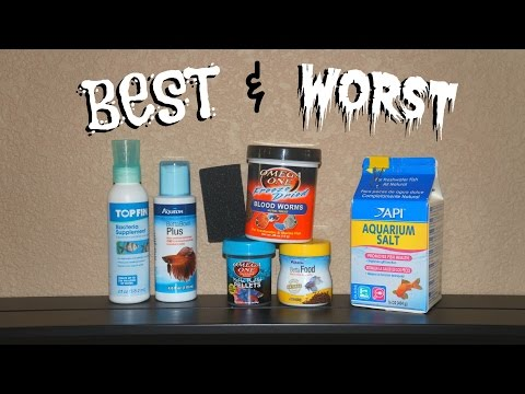 BEST & WORST BETTA FISH PRODUCTS