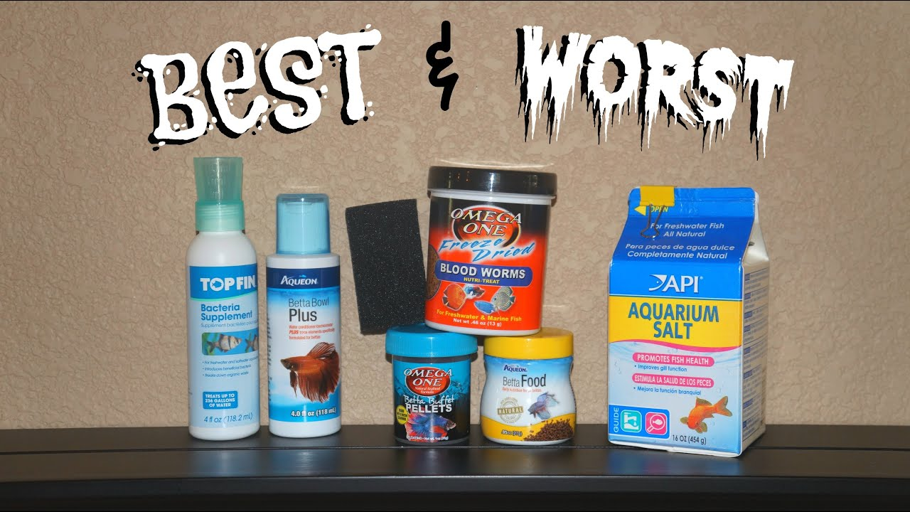 Best worst betta fish products youtube for Betta fish feeder