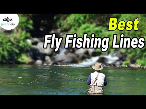 Best Fly Fishing Lines Of 2020 – Expert Reviews And Buying Guide