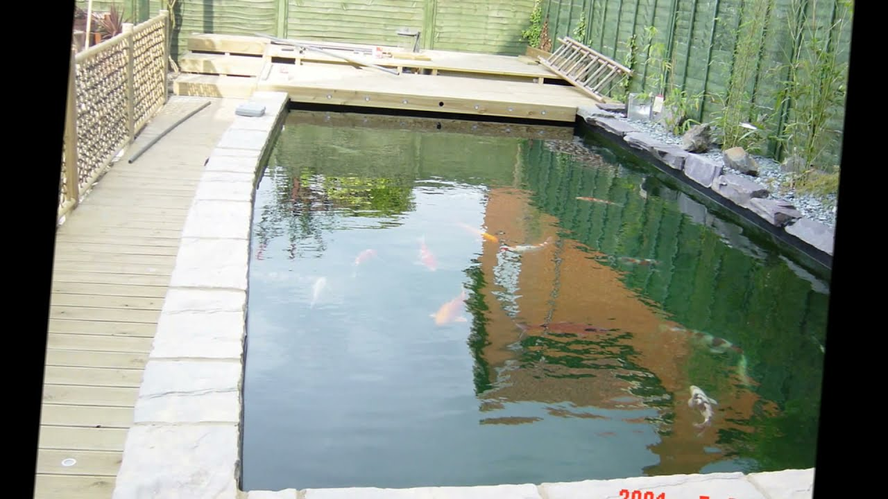 A must see heated japanese koi pond and nexus filter for Koi filtration systems