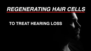 Regenerating Hair Cells to Treat Hearing Loss