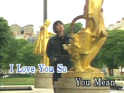 You Mean Every thing To Me karaoke