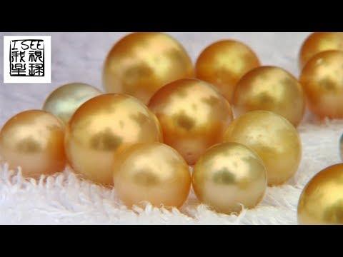 菲律宾巴拉望价值连城的金色珍珠都是人工饲养