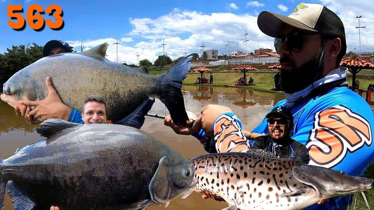Esmeralda - Resenha do Fishingtur com muito peixe - Fishingtur na TV 563