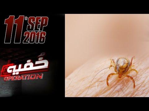 Congo Virus Kay Naam Pe Loot Maar | Khufia Operation | Bakra Eid Special | 11 Sept 2016