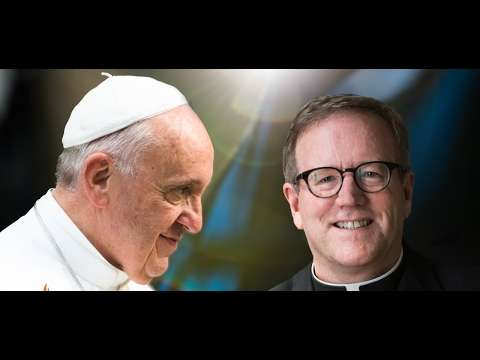 WHO'S HE TO JUDGE? Bishop Barron & the Church of Accompaniment