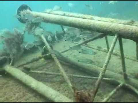 Pinellas County S Artificial Reefs Youtube