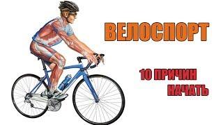видео Есть ли польза от езды на велосипеде? Польза велосипеда