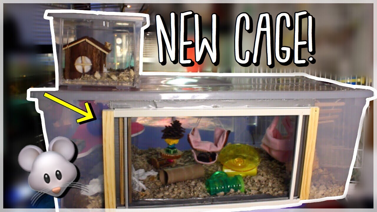 new mouse cage tour how to make an awesome bin cage diy rodent