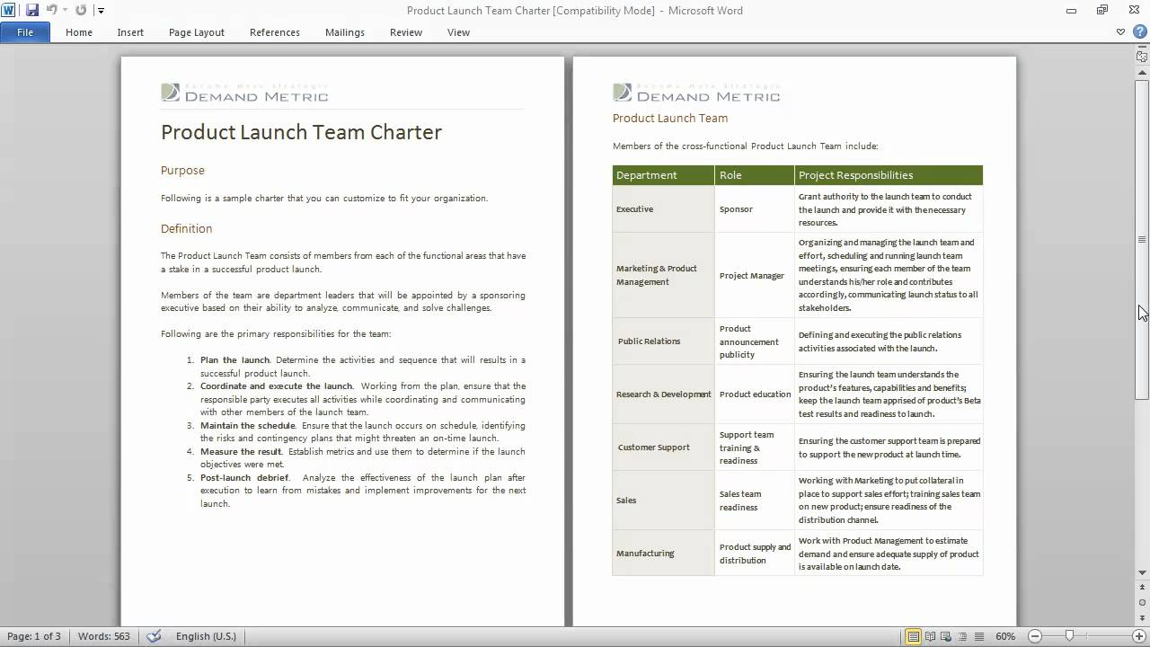 Product launch team charter youtube for Team charter template sample