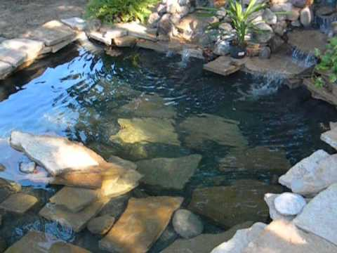 Koi pond with waterfalls 1500 gallons finished oct 2013 for Koi pond gallons