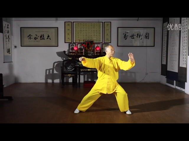 Chen Dong Shan  - Tai Chi style Chen Xiaojia Yilu (2)